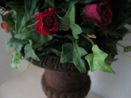 Roses Médicis
