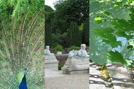 jardin_de_bagatelle10