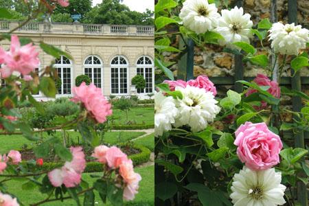 jardin_de_bagatelle7