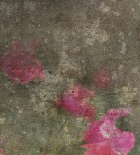 fleurs_hiver2