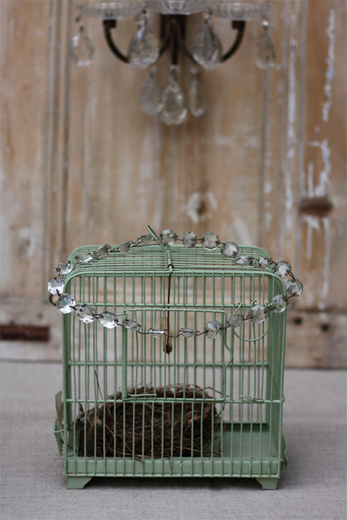 cage_verte