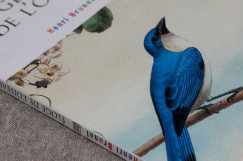 Éloge de l'oiseau, de Henri Brunel