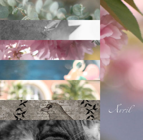 Carnet d'inspiration / avril