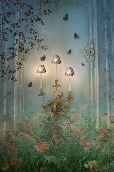 Papillons attirés par la lumière
