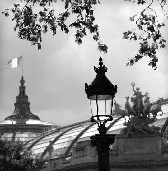La verrière du Grand Palais