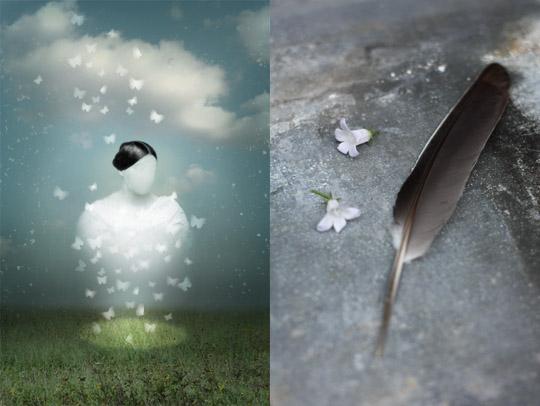 Création numérique et photographie