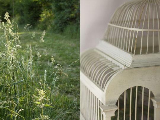 Cage blanche décorative