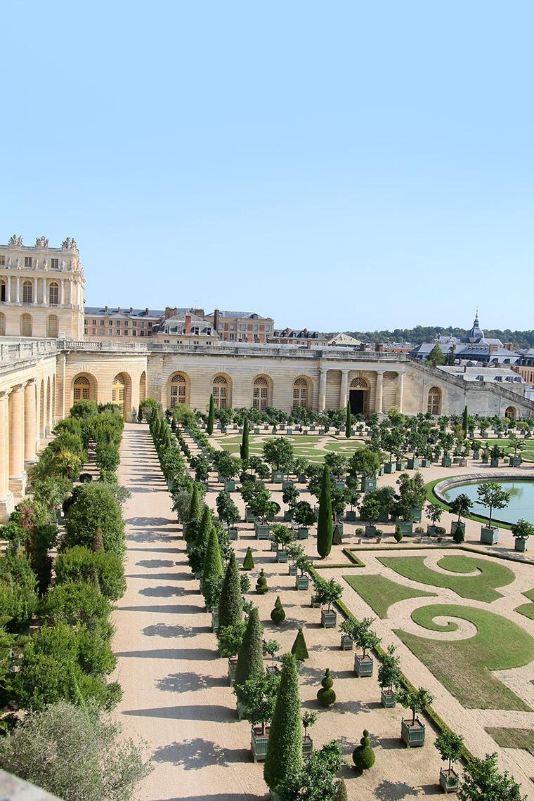 Les parterres de l'orangerie de Versailles