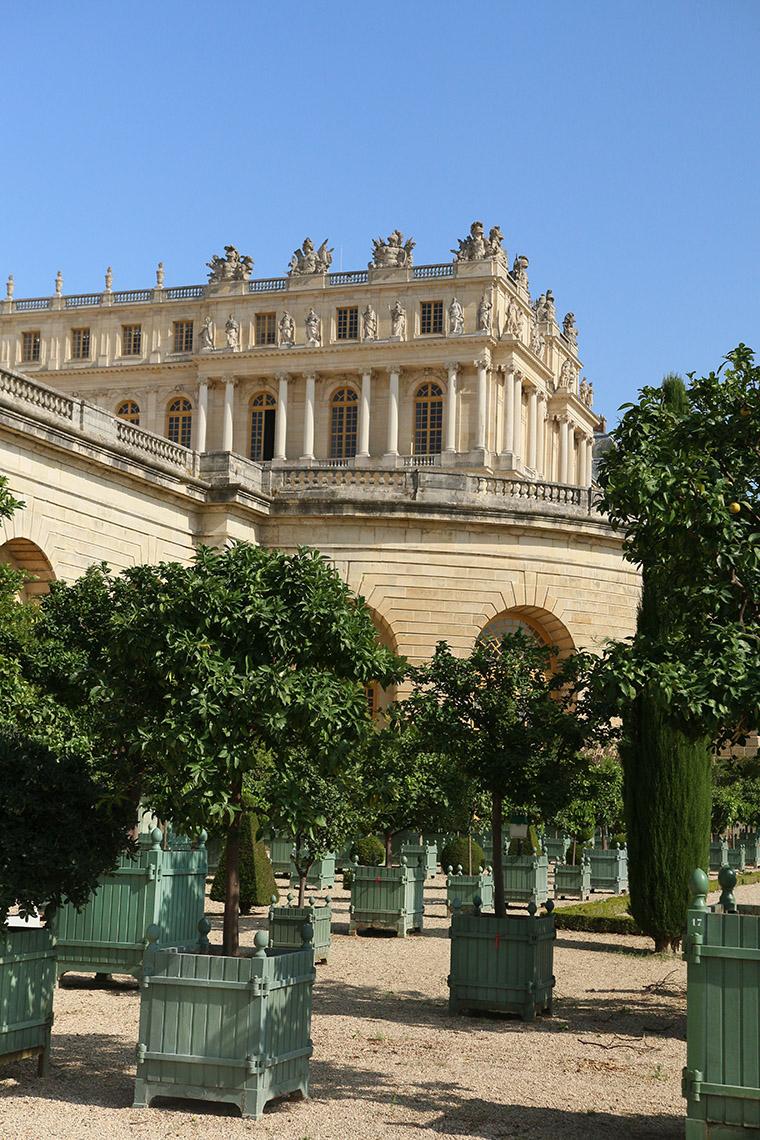 La collection végétale de Versailles