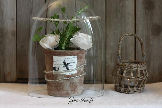Romarin et fleurs blanches