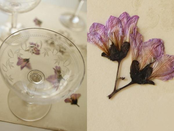 Petites fleurs