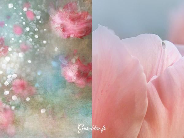 Fleurs claires