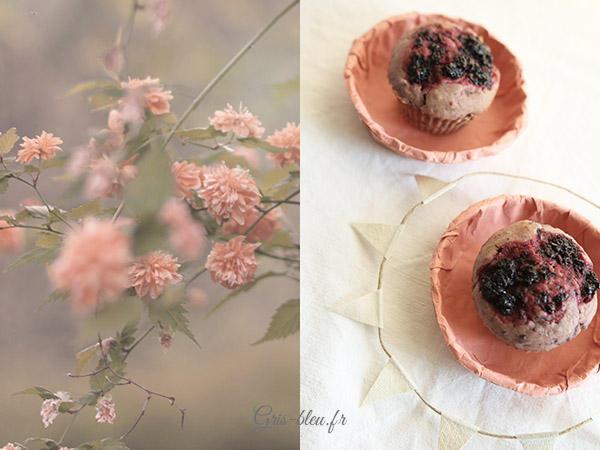 Fleurs rosées