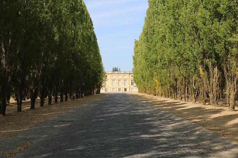 Le grande allée du Petit Trianon