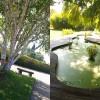 Jardin de l'école du Brueil à Vincennes