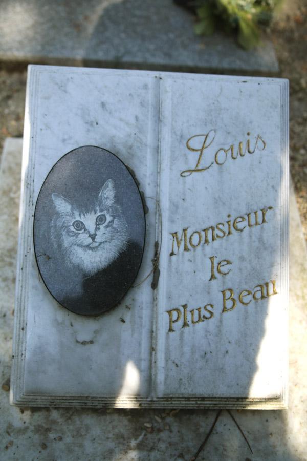 Le cimetière des chiens