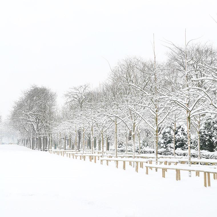 Une allée du jardin du Luxembourg sous la neige