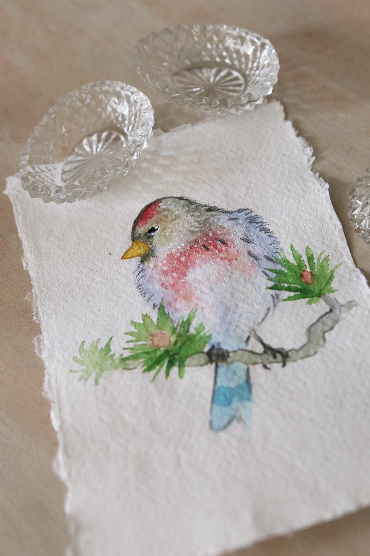 Oiseau exotique à l'aquarelle