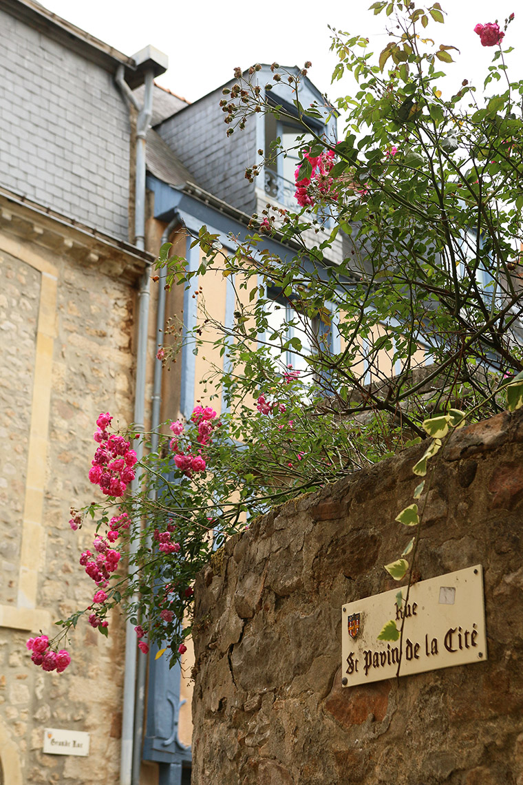 Rue Saint-pavin de la Cité, Cité plantagenêt