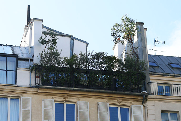 Terrasse végétalisée sur les toits