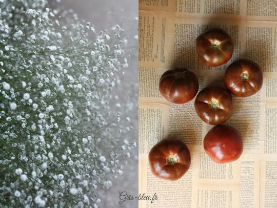 Soleil, chaleur et noires tomates